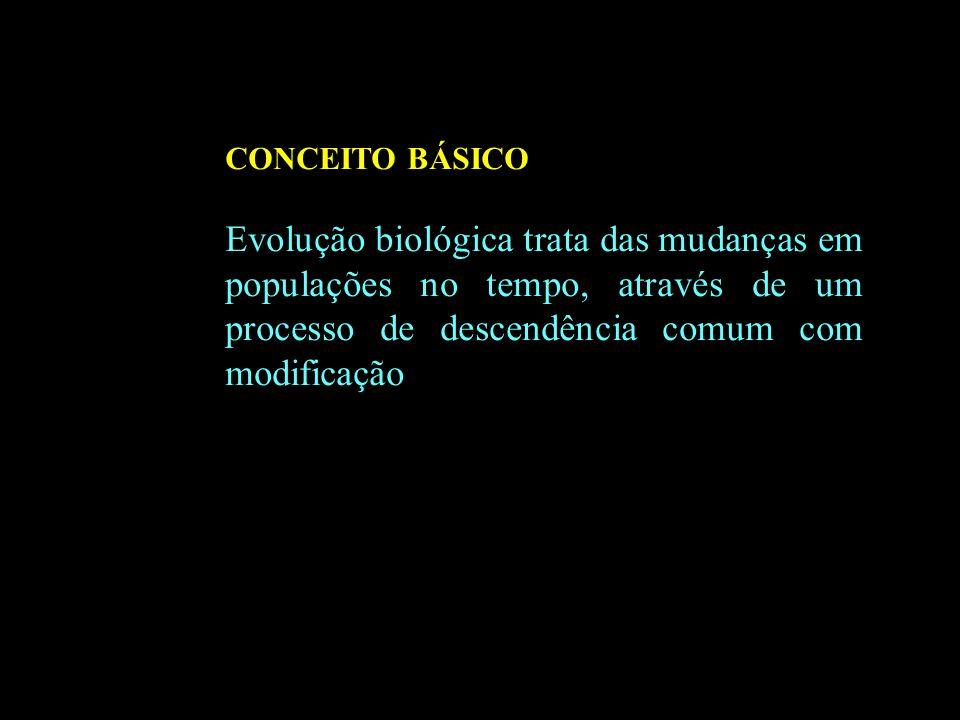 CONCEITO BÁSICO Evolução biológica trata das mudanças em populações no tempo, através de um processo de descendência comum com modificação.