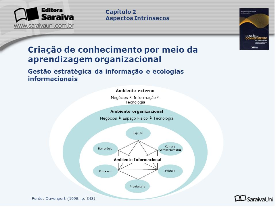 Ambiente organizacional Ambiente Informacional