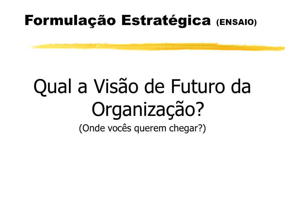 Qual a Visão de Futuro da Organização