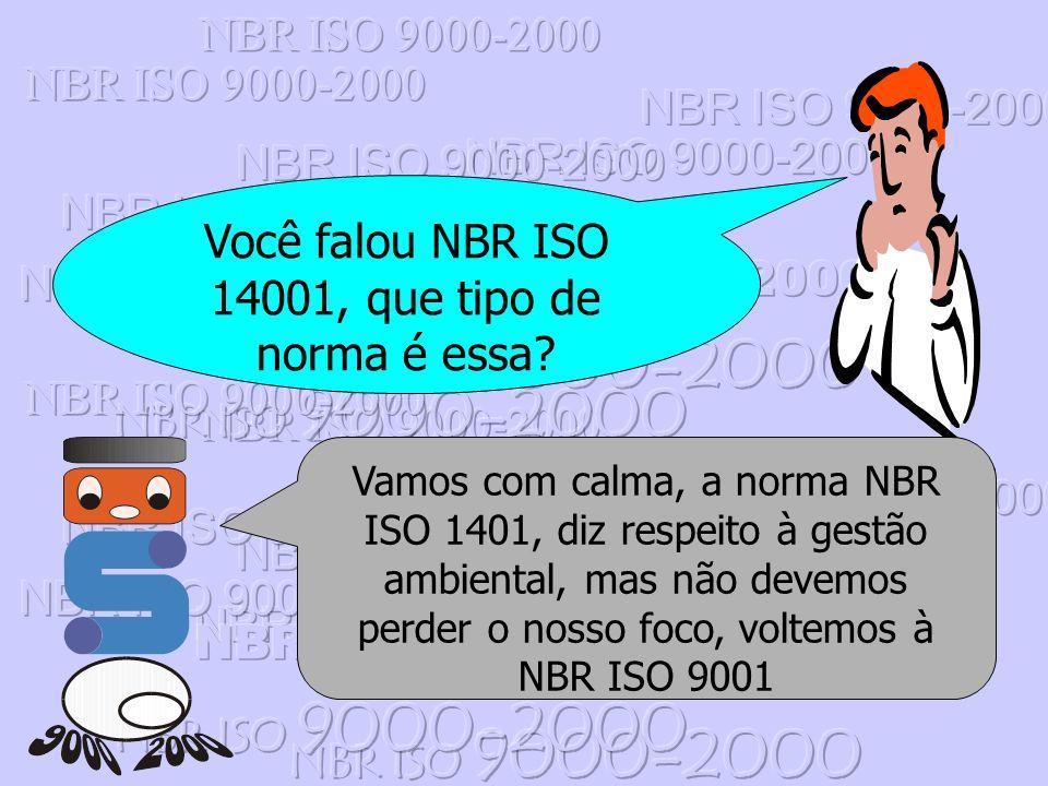 Você falou NBR ISO 14001, que tipo de norma é essa