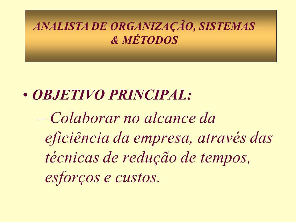 ANALISTA DE ORGANIZAÇÃO, SISTEMAS & MÉTODOS
