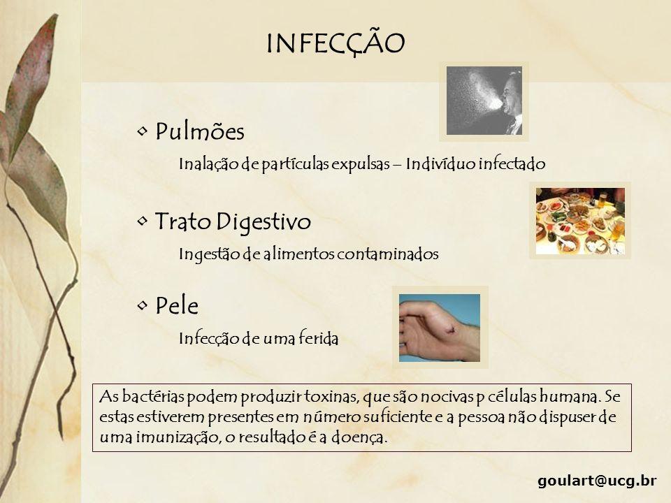 INFECÇÃO Pulmões Trato Digestivo Pele