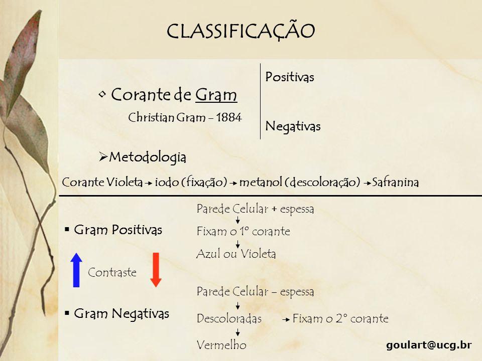 CLASSIFICAÇÃO Corante de Gram Metodologia Gram Positivas