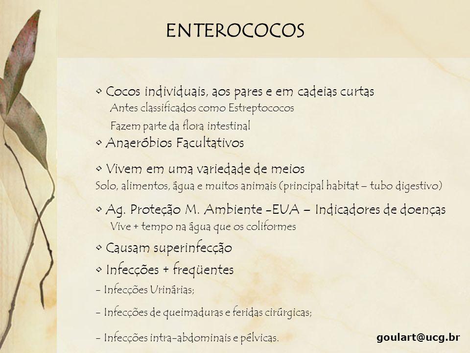 ENTEROCOCOS Cocos individuais, aos pares e em cadeias curtas