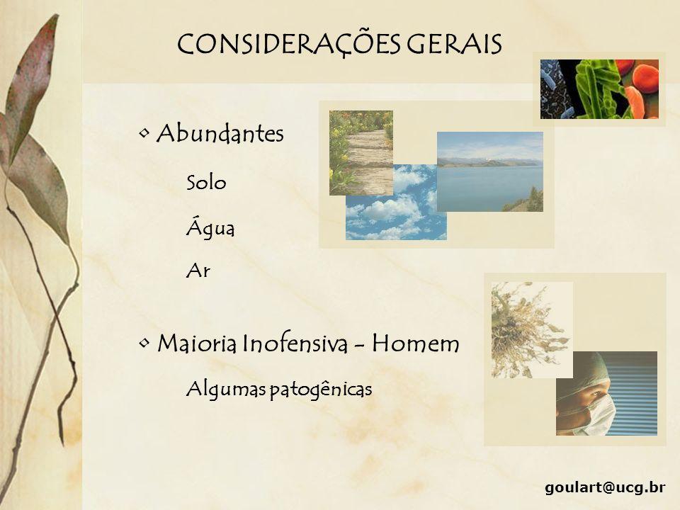 CONSIDERAÇÕES GERAIS Abundantes Maioria Inofensiva - Homem Solo Água