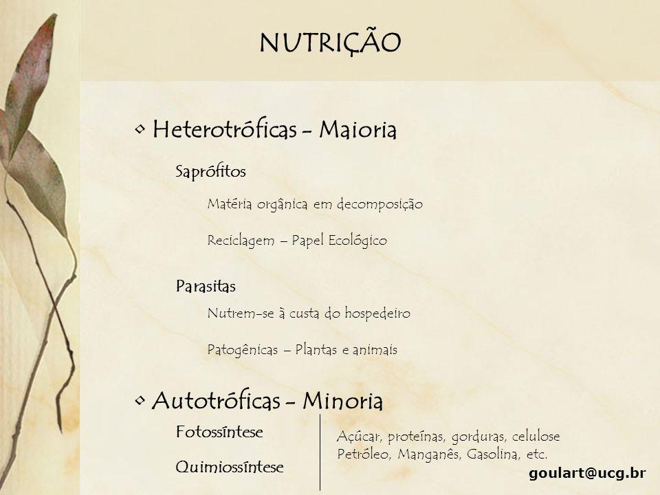 NUTRIÇÃO Heterotróficas - Maioria Autotróficas - Minoria Saprófitos