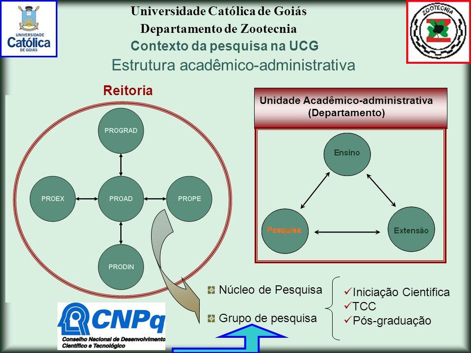 Estrutura acadêmico-administrativa
