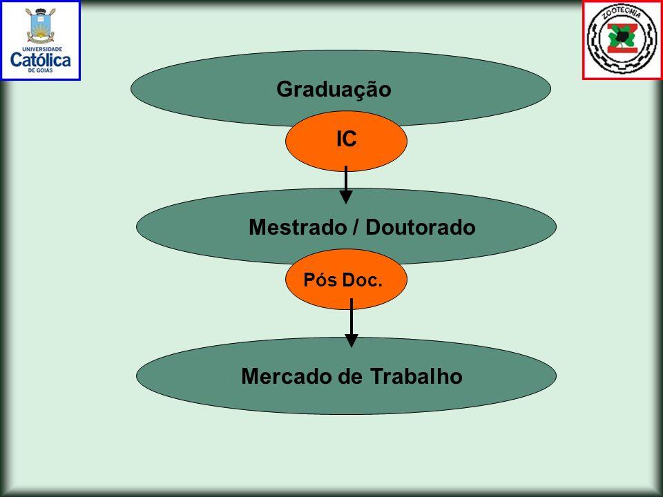 Graduação IC Mestrado / Doutorado Pós Doc. Mercado de Trabalho