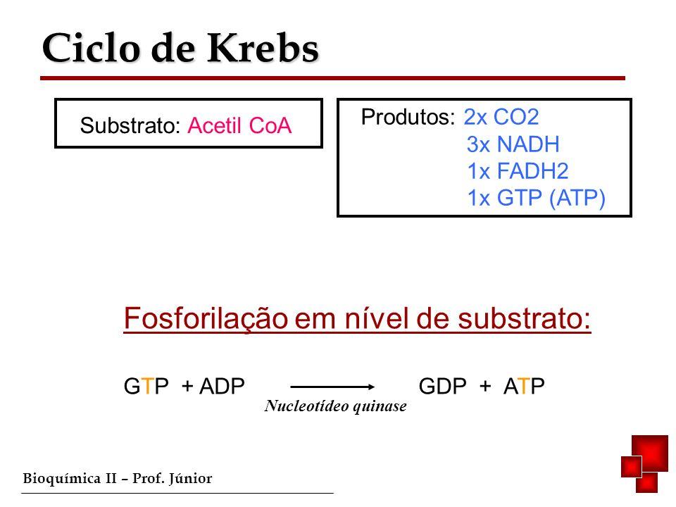 Ciclo de Krebs Produtos: 2x CO2 Substrato: Acetil CoA 3x NADH 1x FADH2