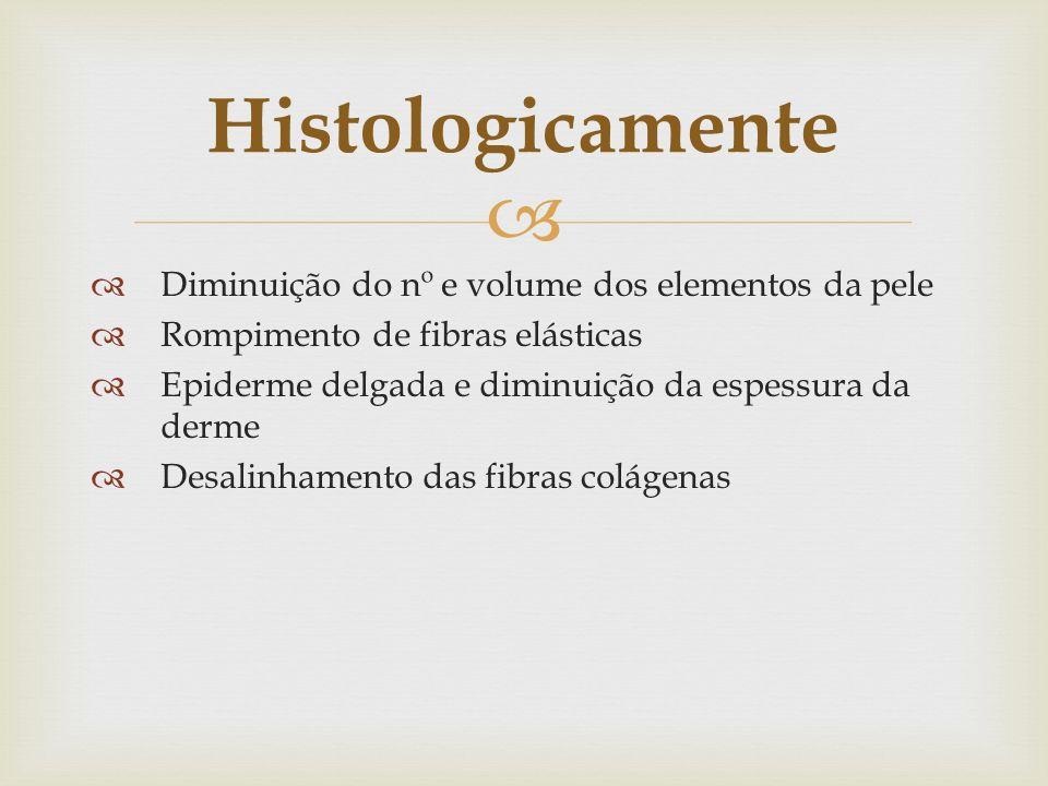 Histologicamente Diminuição do nº e volume dos elementos da pele