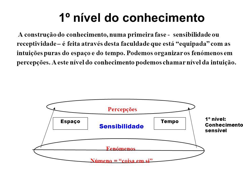 1º nível do conhecimento
