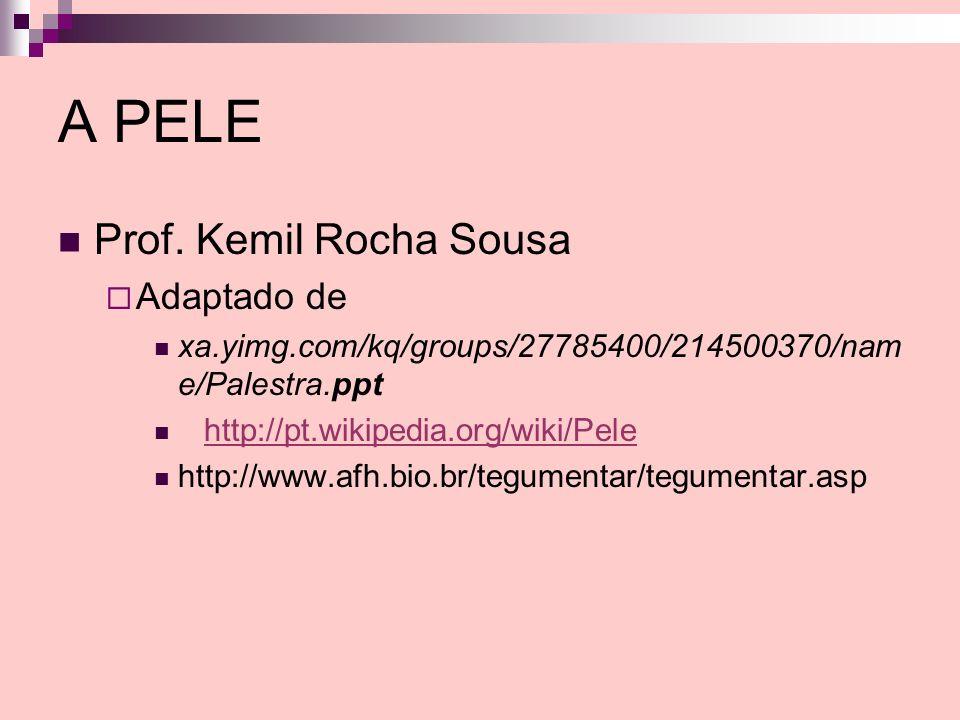 A PELE Prof. Kemil Rocha Sousa Adaptado de
