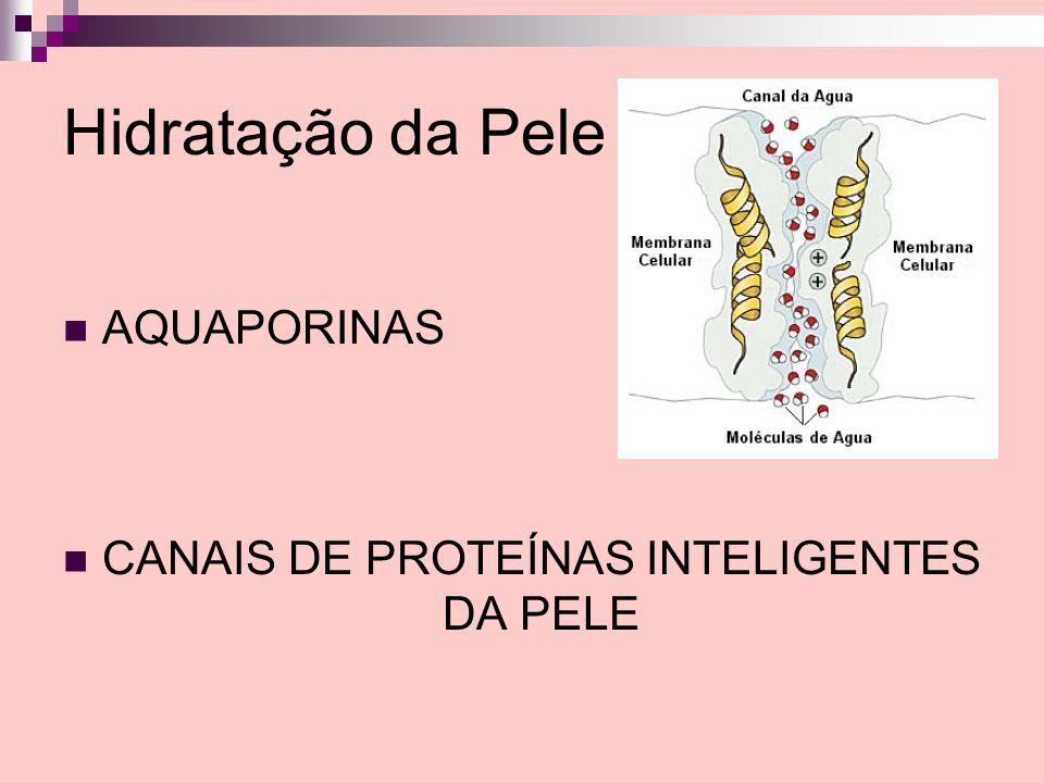 CANAIS DE PROTEÍNAS INTELIGENTES DA PELE