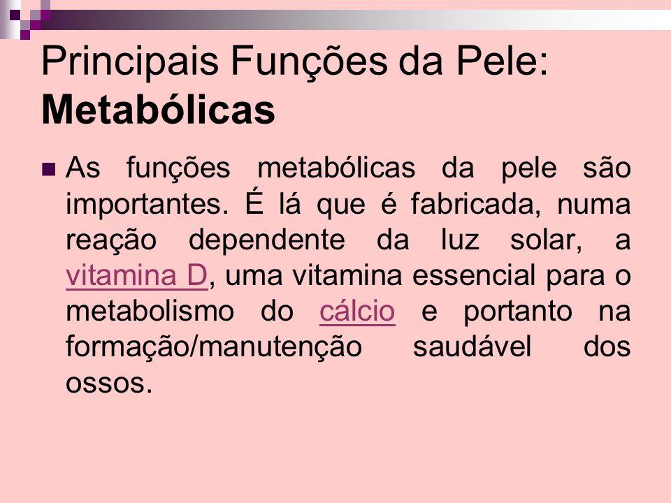 Principais Funções da Pele: Metabólicas