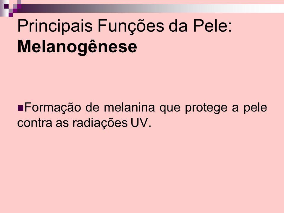 Principais Funções da Pele: Melanogênese