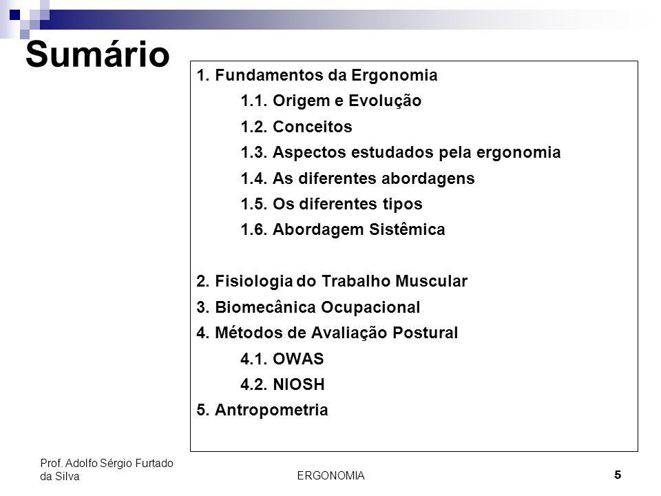 Sumário 1. Fundamentos da Ergonomia 1.1. Origem e Evolução