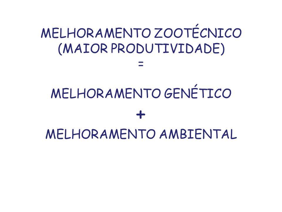 + MELHORAMENTO ZOOTÉCNICO (MAIOR PRODUTIVIDADE) =
