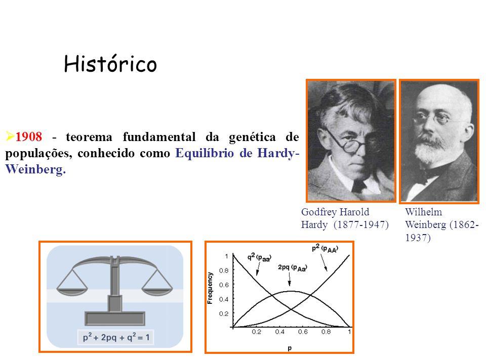 Histórico 1908 - teorema fundamental da genética de populações, conhecido como Equilíbrio de Hardy-Weinberg.