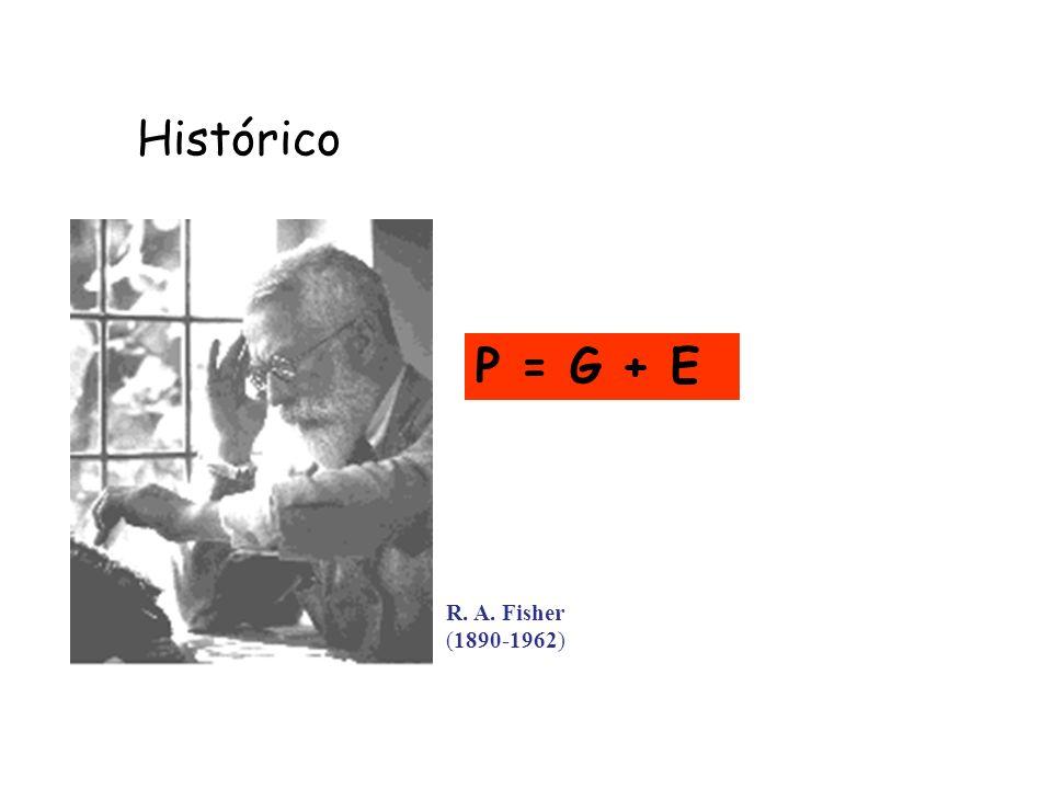 Histórico P = G + E R. A. Fisher (1890-1962)
