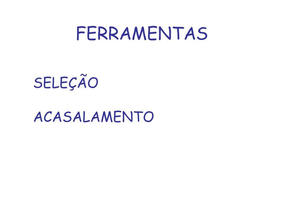 FERRAMENTAS SELEÇÃO ACASALAMENTO