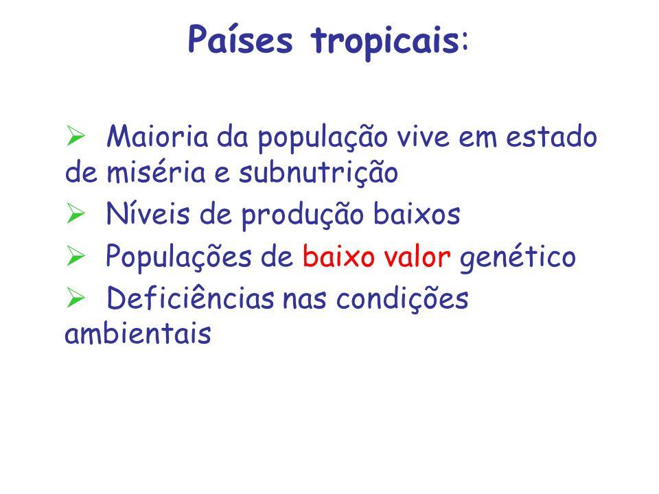 Países tropicais: Maioria da população vive em estado de miséria e subnutrição. Níveis de produção baixos.
