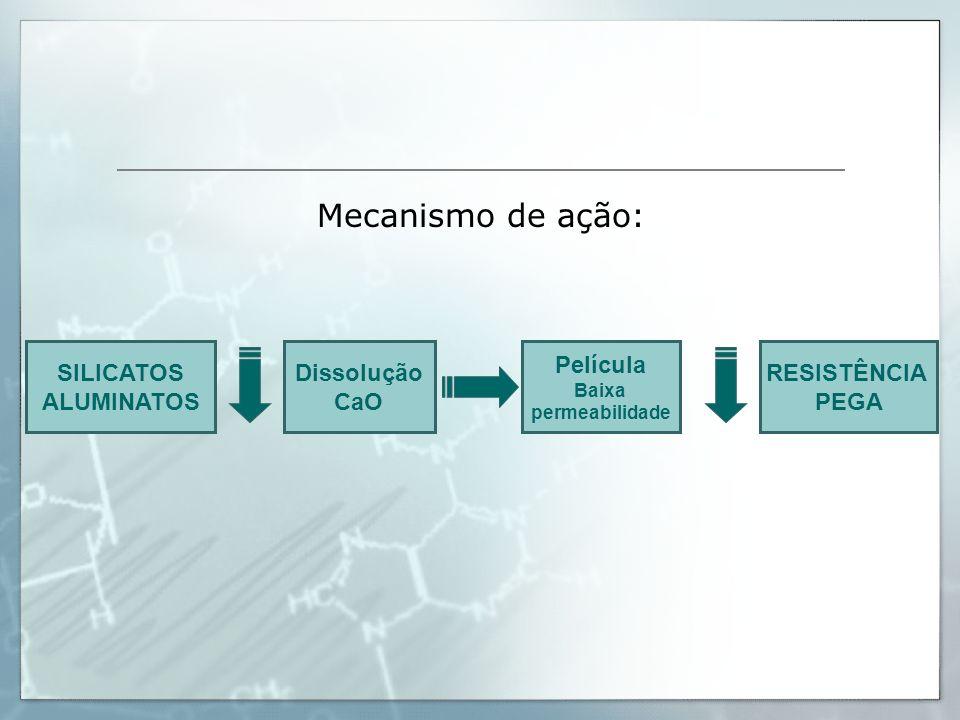 Mecanismo de ação: SILICATOS ALUMINATOS Dissolução CaO Película