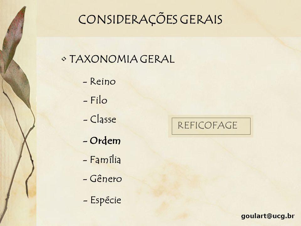 CONSIDERAÇÕES GERAIS TAXONOMIA GERAL - Reino - Filo - Classe