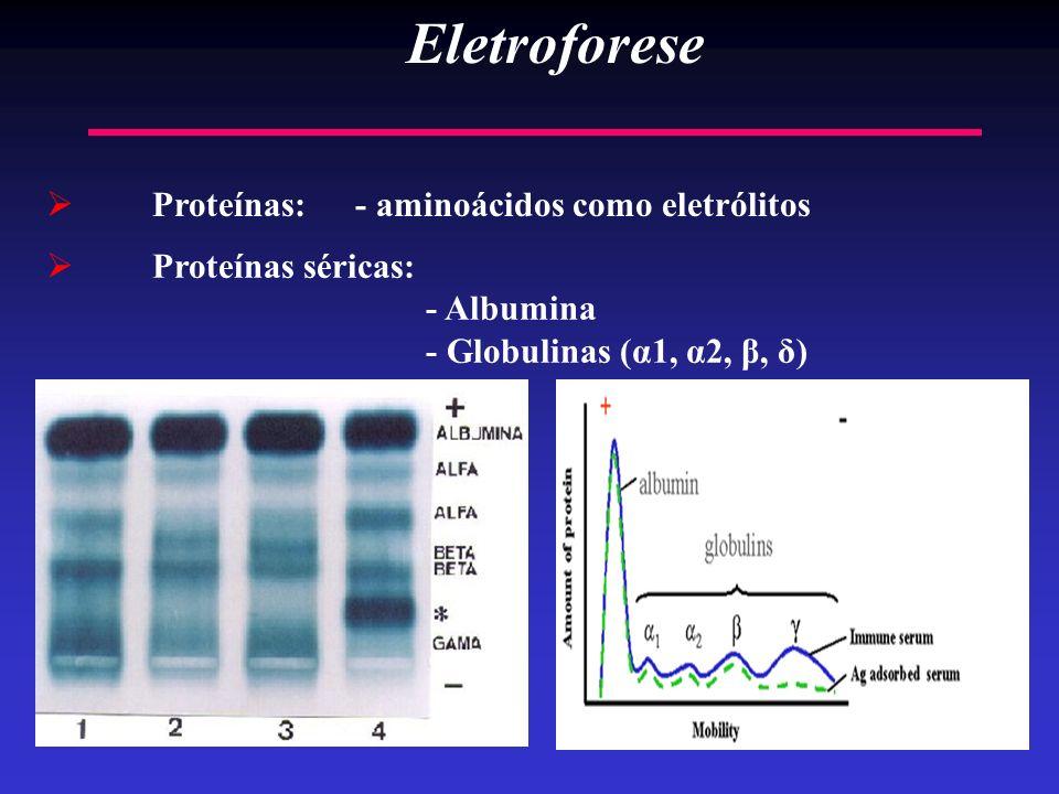 Eletroforese Proteínas: - aminoácidos como eletrólitos