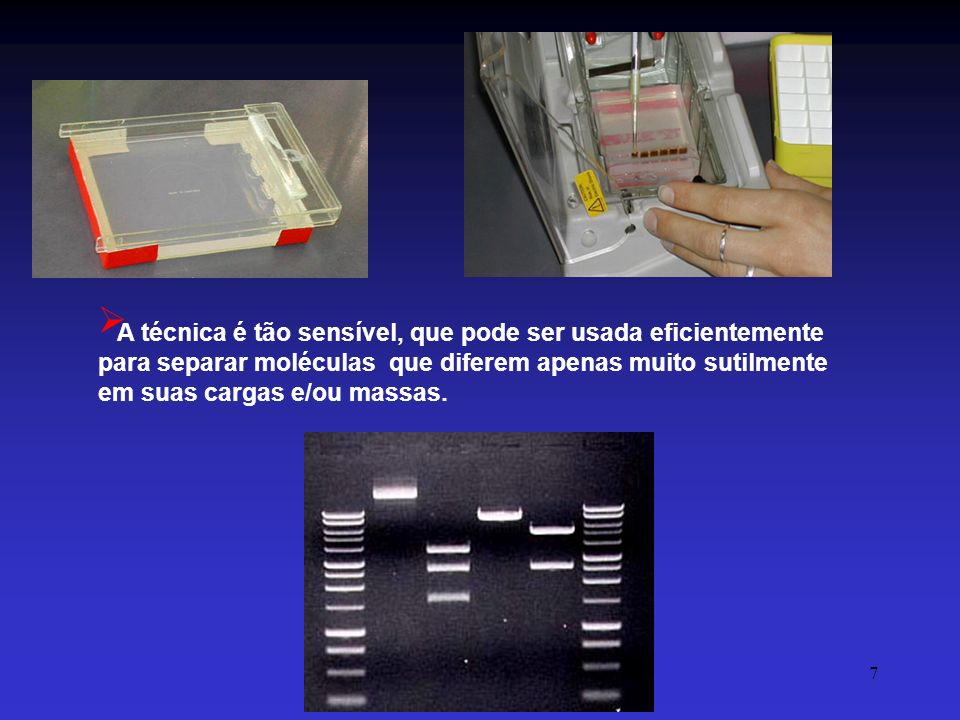 A técnica é tão sensível, que pode ser usada eficientemente para separar moléculas que diferem apenas muito sutilmente em suas cargas e/ou massas.