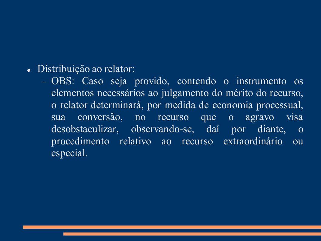 Distribuição ao relator: