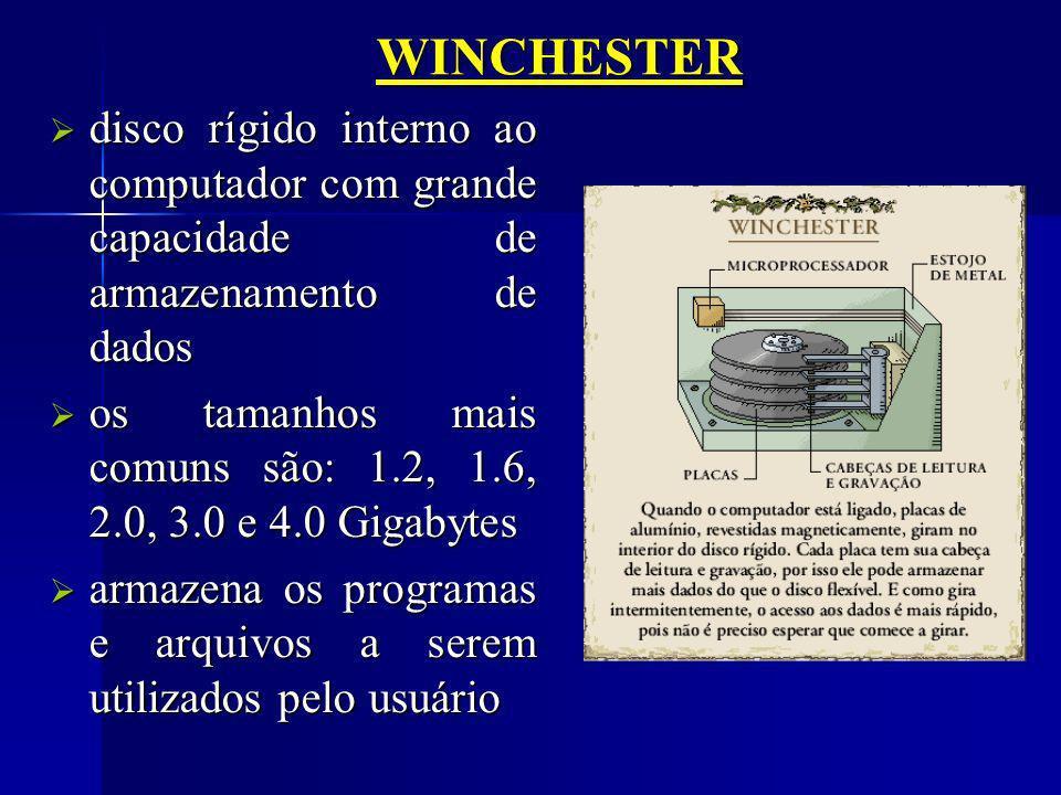 WINCHESTER disco rígido interno ao computador com grande capacidade de armazenamento de dados.