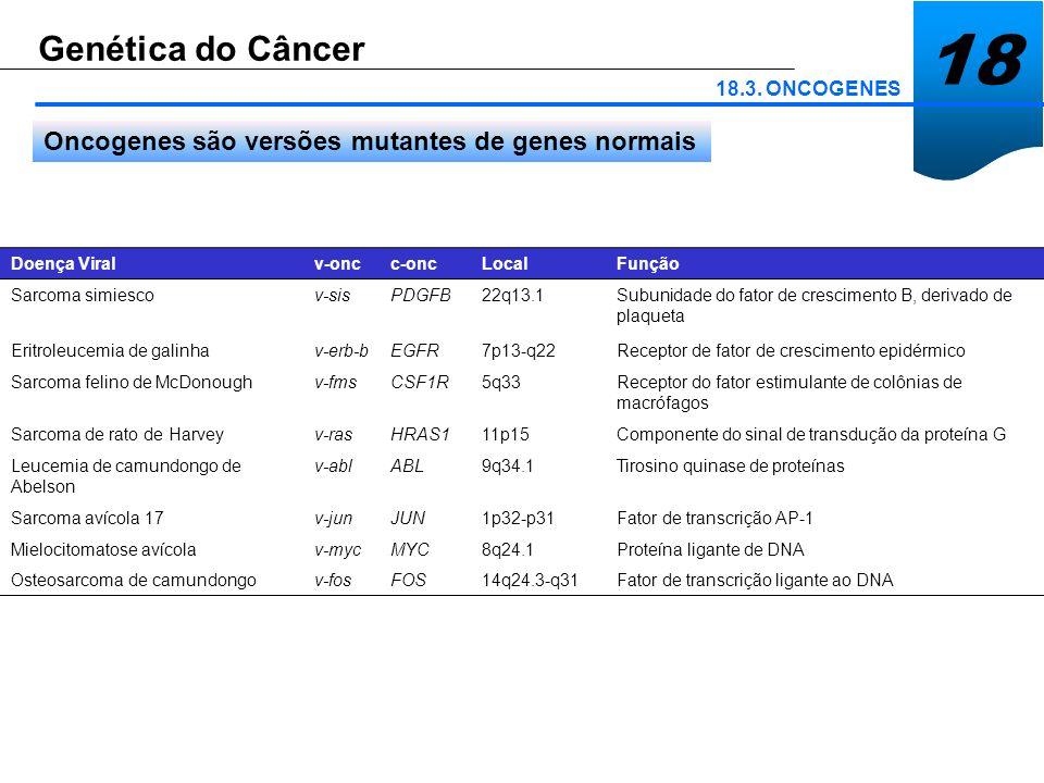 18 Genética do Câncer Oncogenes são versões mutantes de genes normais