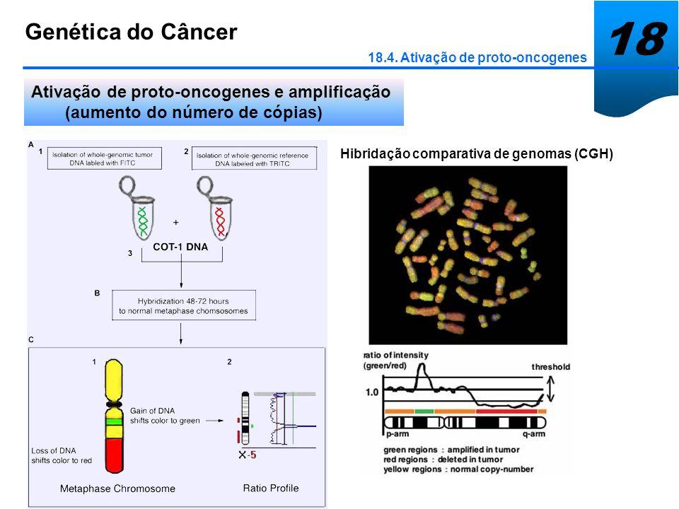 Hibridação comparativa de genomas (CGH)