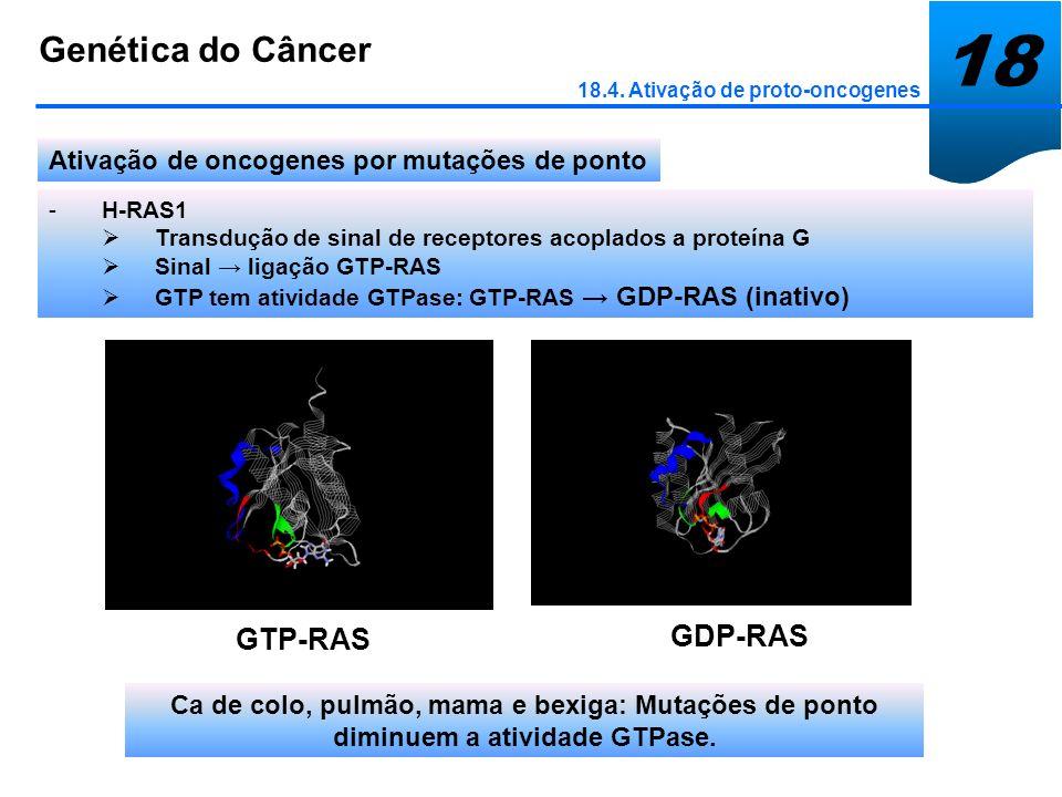 18 Genética do Câncer GDP-RAS GTP-RAS