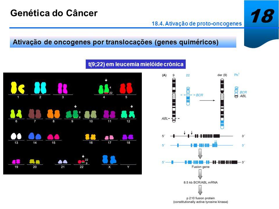t(9;22) em leucemia mielóide crônica