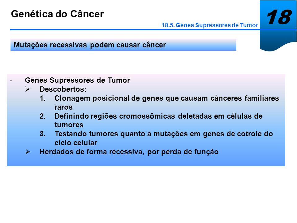 18 Genética do Câncer Mutações recessivas podem causar câncer