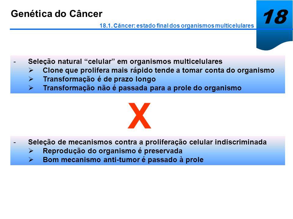 18 Genética do Câncer. 18.1. Câncer: estado final dos organismos multicelulares. Seleção natural celular em organismos multicelulares.