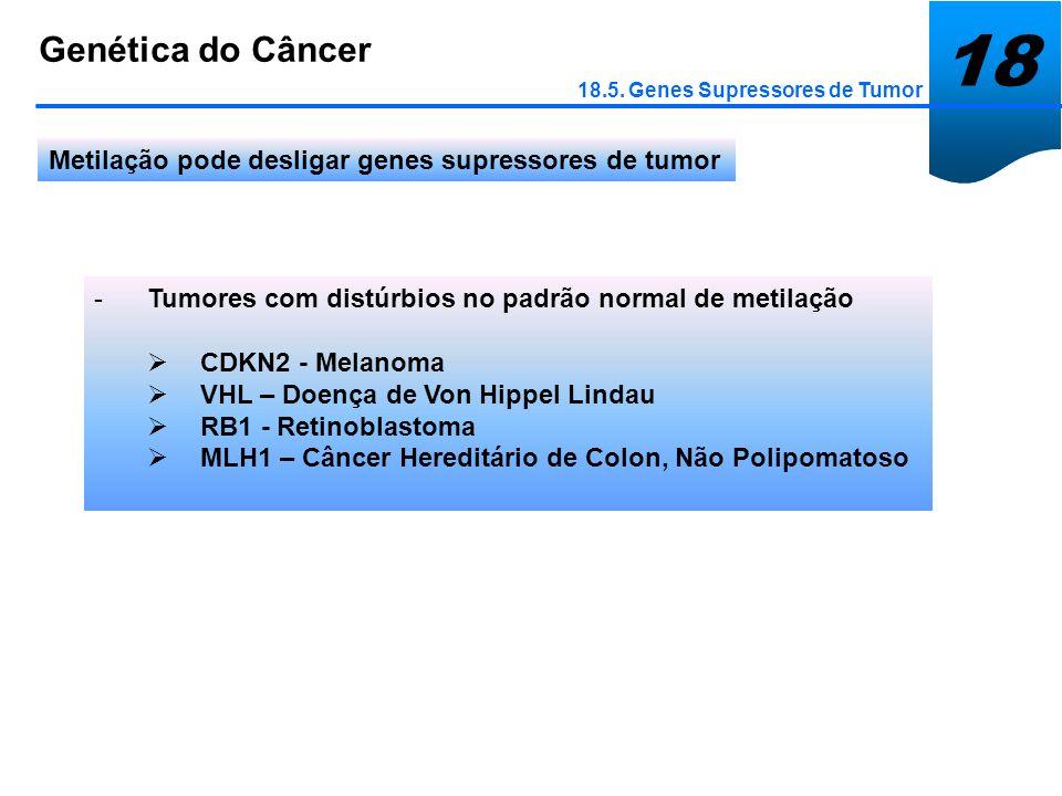 18 Genética do Câncer. 18.5. Genes Supressores de Tumor. Metilação pode desligar genes supressores de tumor.