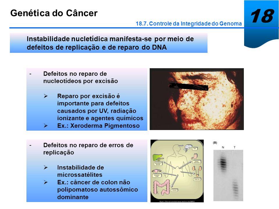 18Genética do Câncer. 18.7. Controle da Integridade do Genoma.