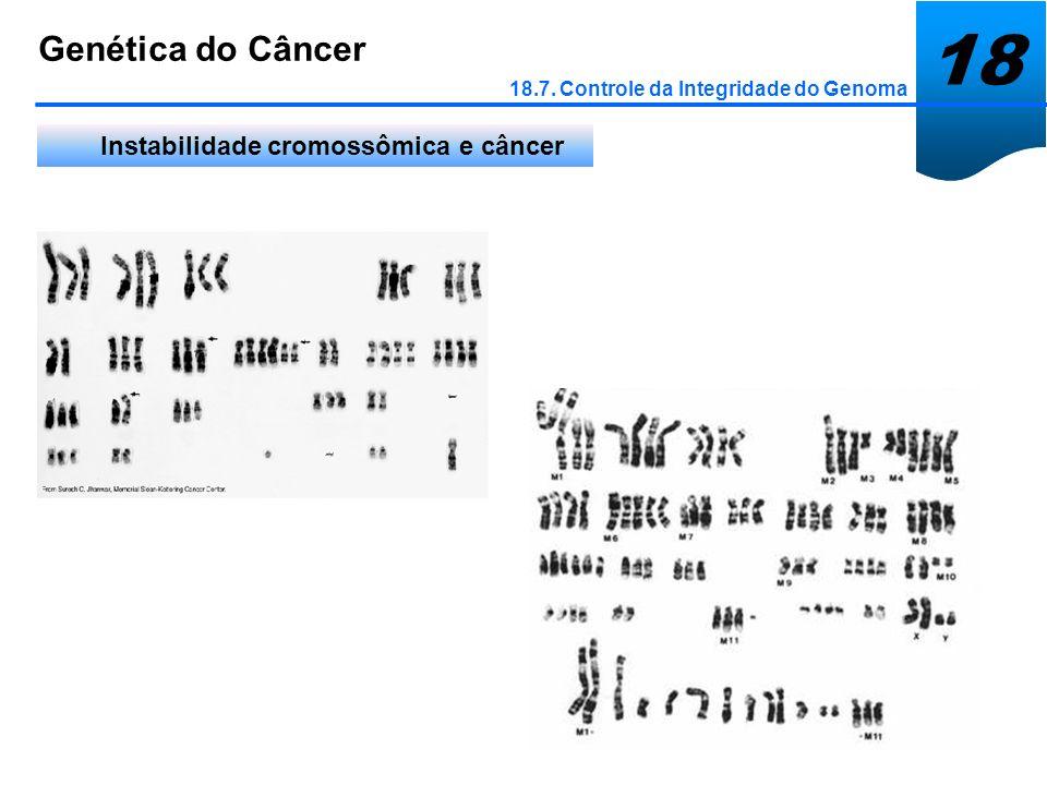 18 Genética do Câncer Instabilidade cromossômica e câncer