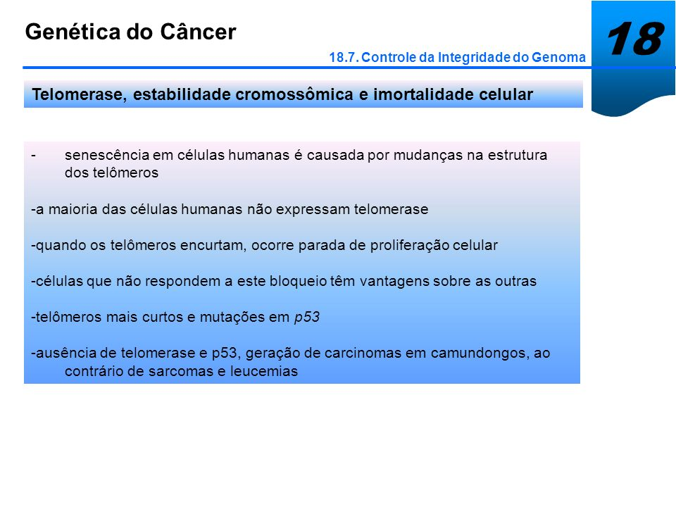 18 Genética do Câncer. 18.7. Controle da Integridade do Genoma. Telomerase, estabilidade cromossômica e imortalidade celular.