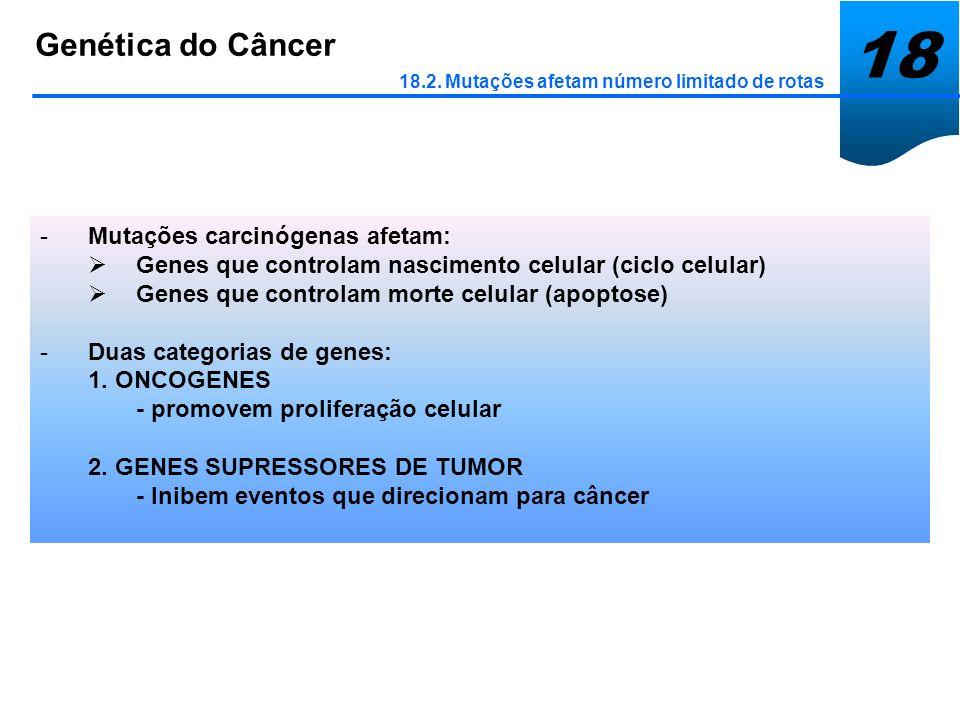 18 Genética do Câncer Mutações carcinógenas afetam: