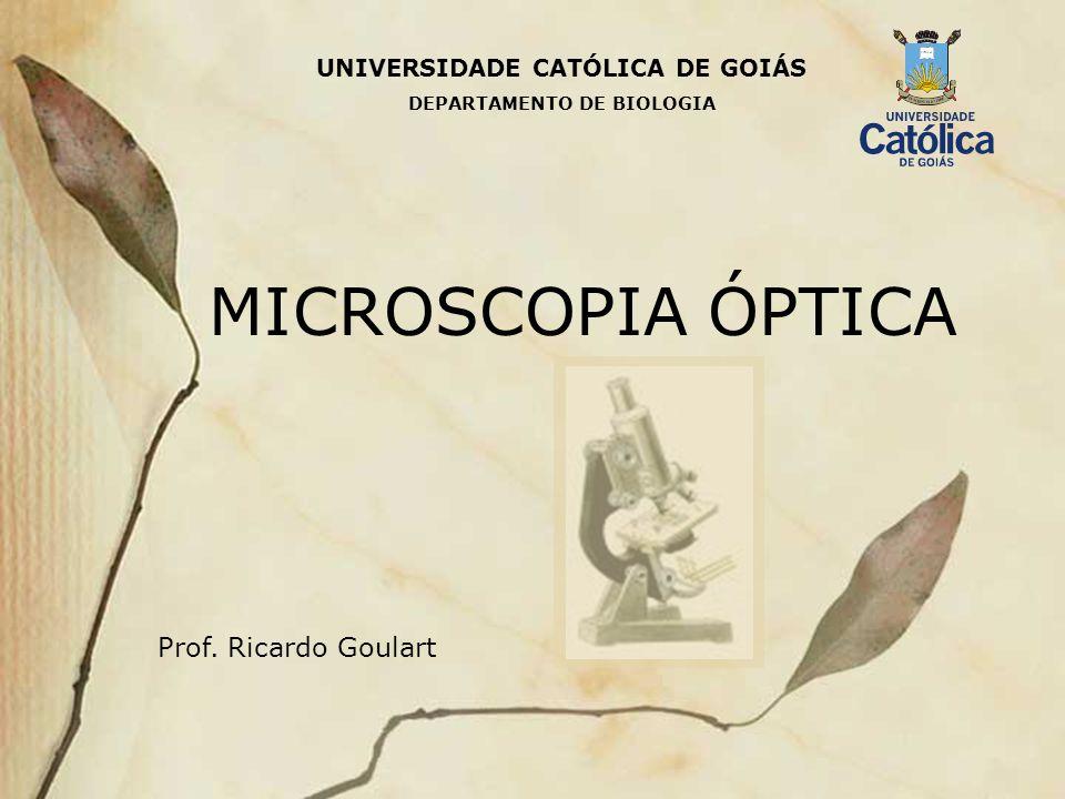 MICROSCOPIA ÓPTICA Prof. Ricardo Goulart