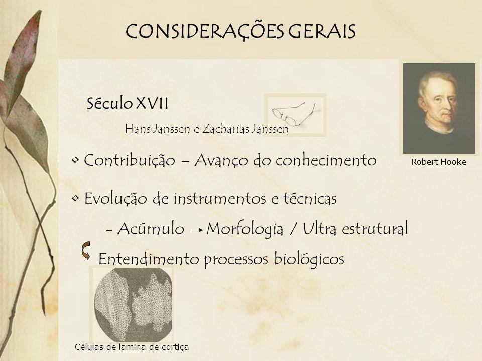 CONSIDERAÇÕES GERAIS Século XVII Contribuição – Avanço do conhecimento