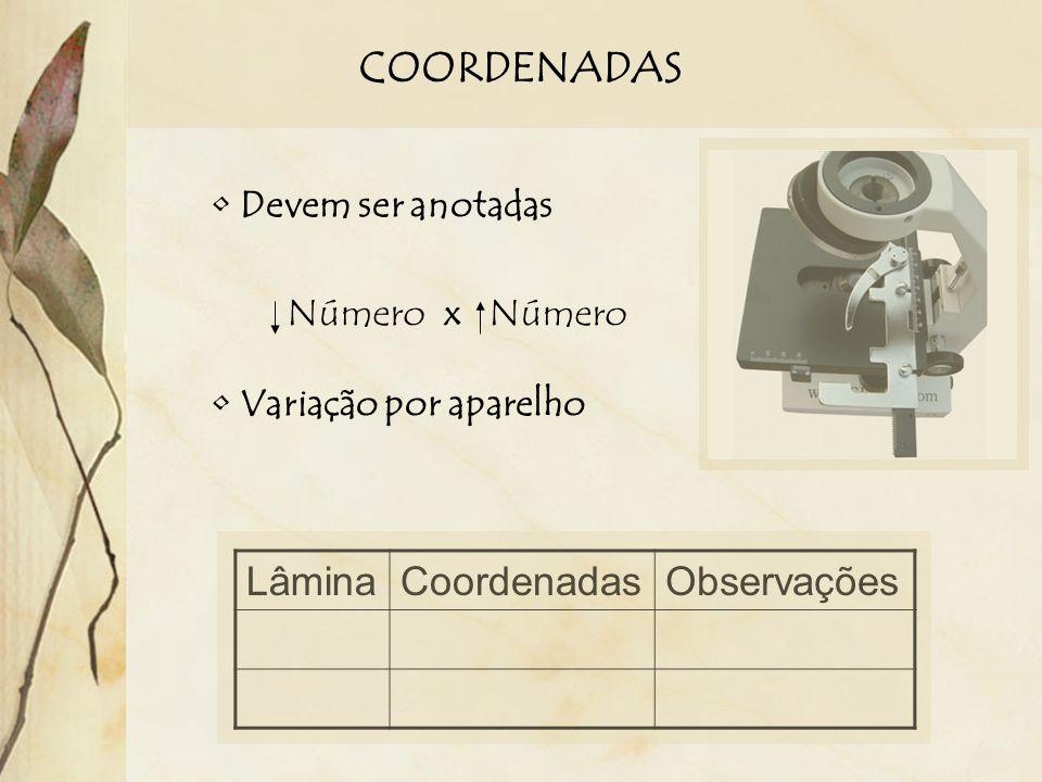 COORDENADAS Lâmina Coordenadas Observações Devem ser anotadas