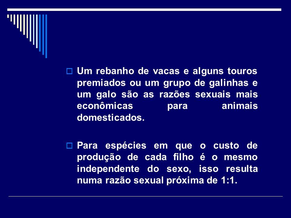 Um rebanho de vacas e alguns touros premiados ou um grupo de galinhas e um galo são as razões sexuais mais econômicas para animais domesticados.