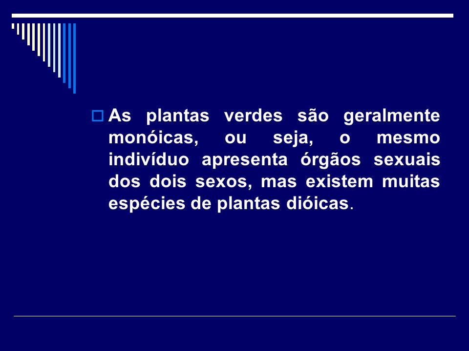 As plantas verdes são geralmente monóicas, ou seja, o mesmo indivíduo apresenta órgãos sexuais dos dois sexos, mas existem muitas espécies de plantas dióicas.