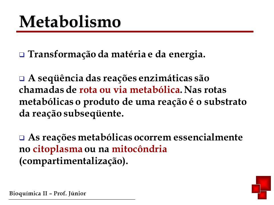 Metabolismo Transformação da matéria e da energia.