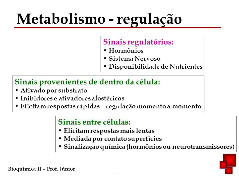 Metabolismo - regulação