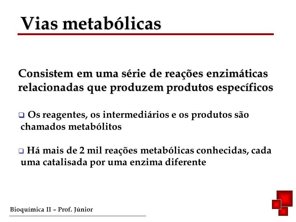 Vias metabólicas Consistem em uma série de reações enzimáticas